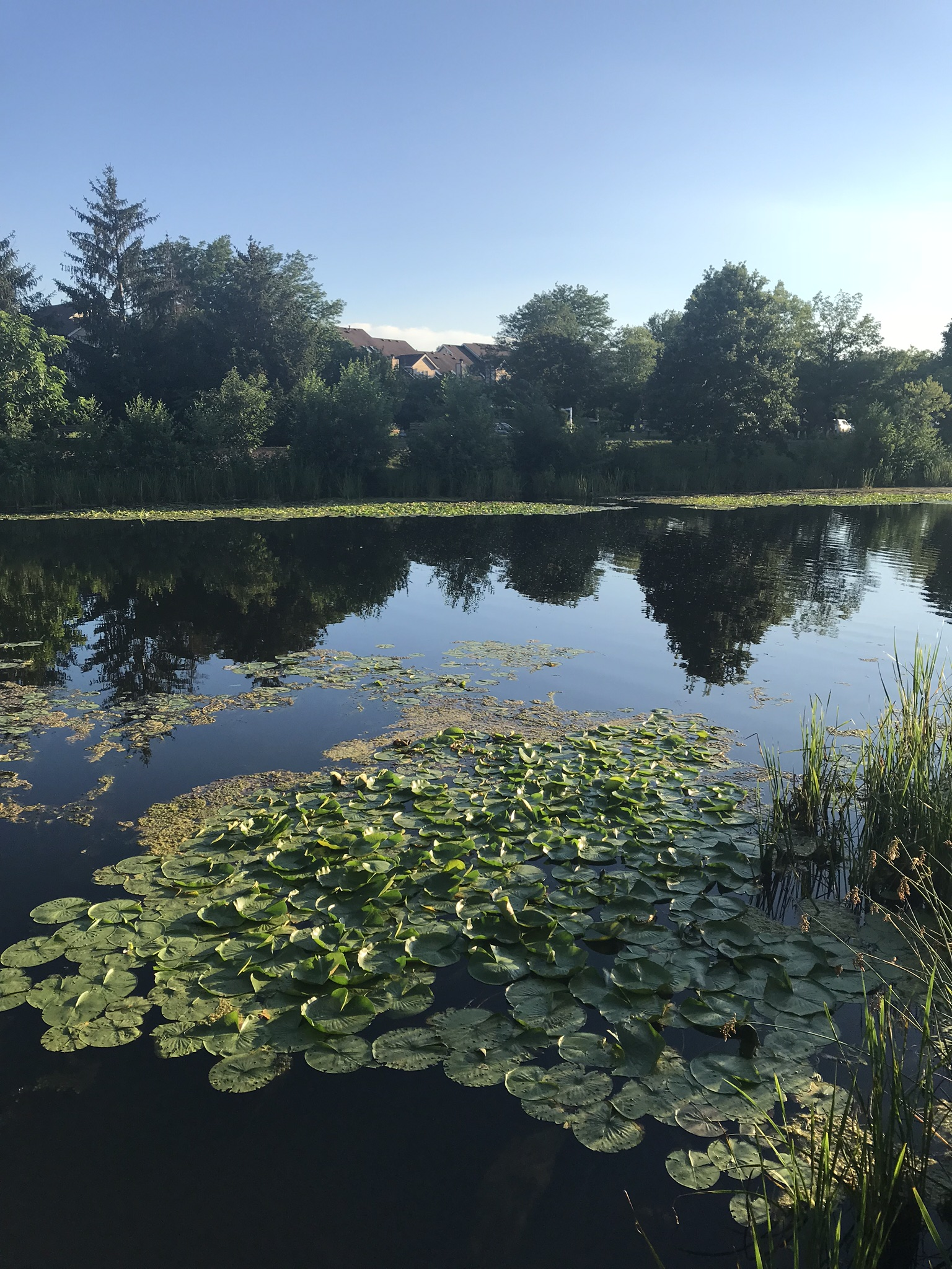 Lake Katherine-1