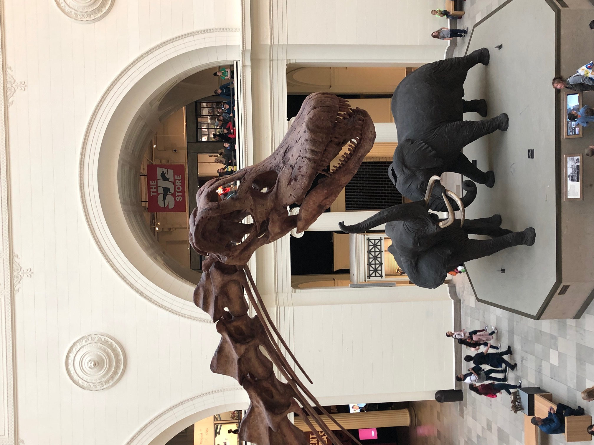 The Field Museum-4