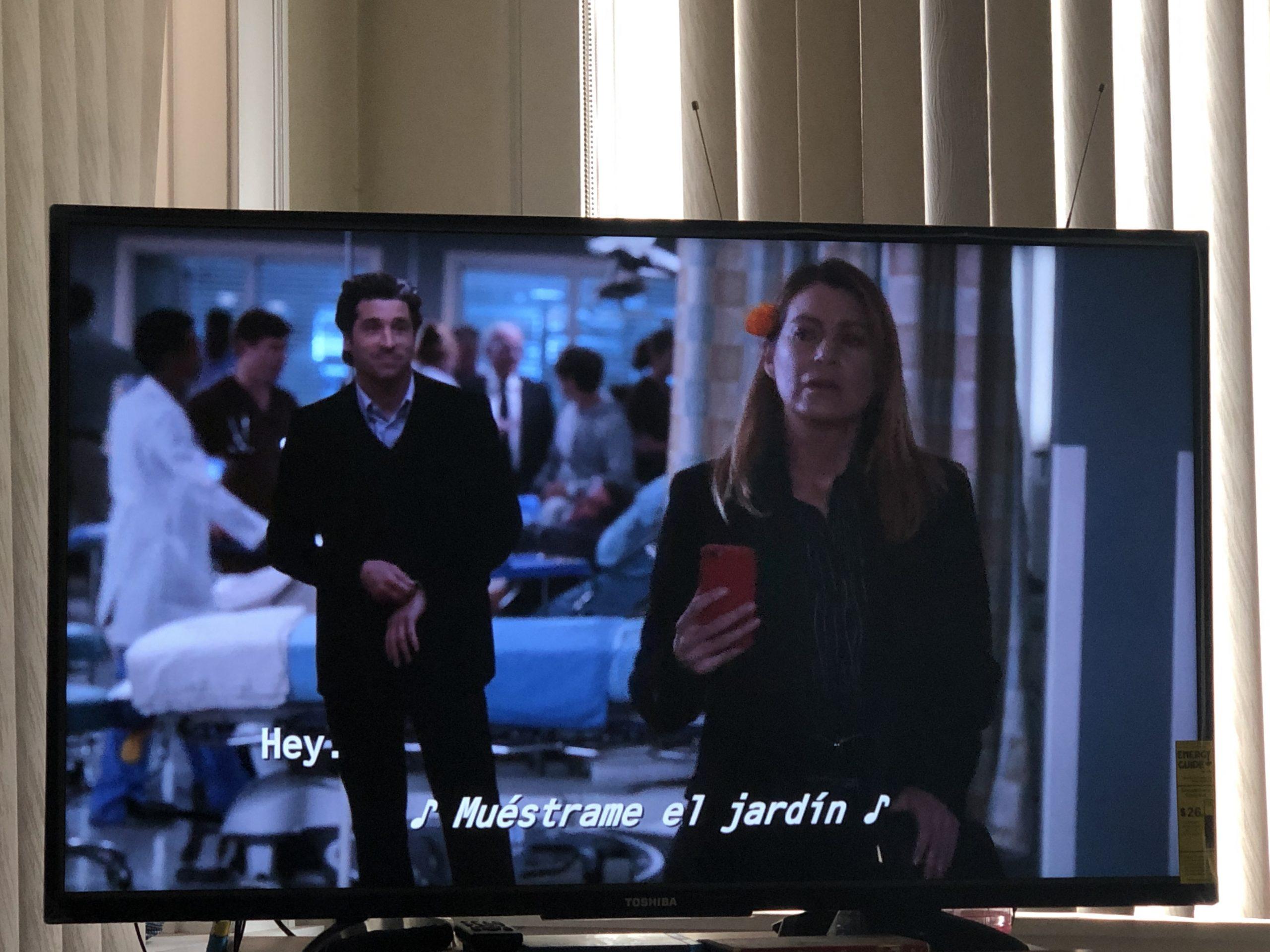 Grey's Anatomy-1